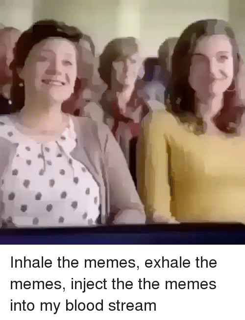 inhale the memes exhale the memes inject the the memes 14277213 ✅ 25 best memes about meme injection meme injection memes,Injection Meme