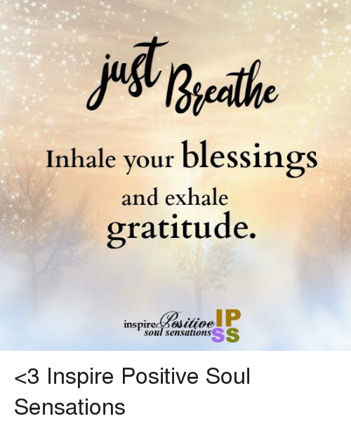 Inhale Your Blessings And Exhale Gratitude Ip Inspir Soul Sensations