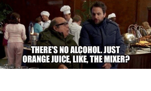 Memes, Alcohol, and 🤖: inng flip.  THERE'S NO ALCOHOL. JUST  ORANGEJUICE, LIKE, THEMIXER?