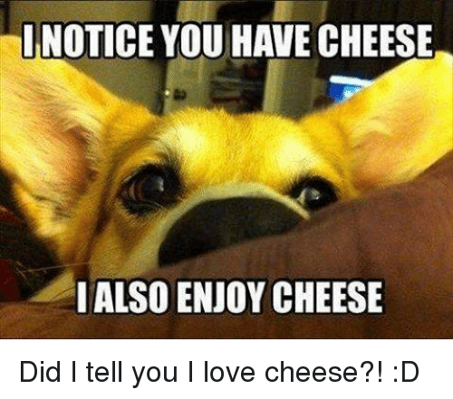 inotice you have cheese i alsoenjoy cheese did i tell 6148866 ✅ 25 best memes about i love cheese i love cheese memes,I Love Memes
