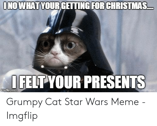 Grumpy Cat Christmas Memes.Inowhat Yourgetting For Christmas Ifelt Your Presents Grumpy