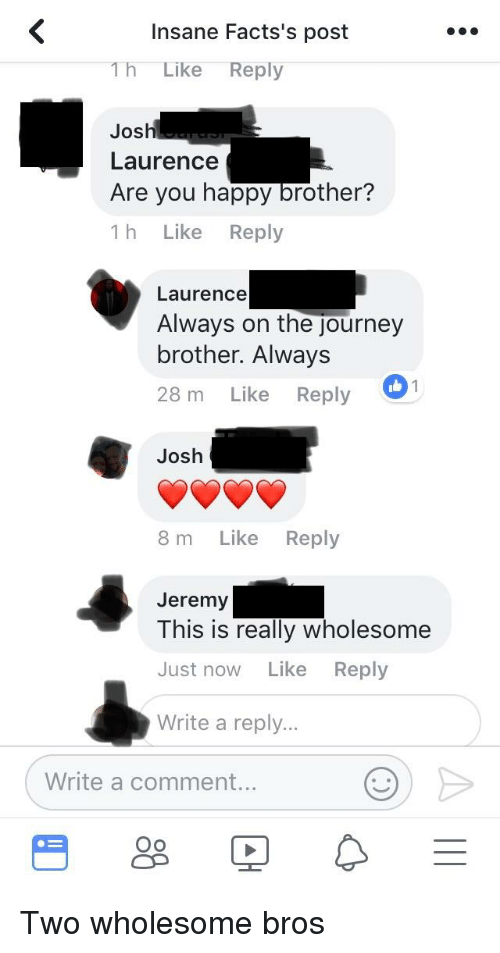 Journey, Happy, and Wholesome: Insane Facts's post  1h Like Reply  Josh  Laurence  Are you happy brother?  1 h Like Reply  Laurence  Always on the journey  brother. Always  28 m Like Reply  Josh  8 m Like Reply  Jeremy  This is really wholesome  Just now Like Reply  Write a reply.  Write a comment..  Oo