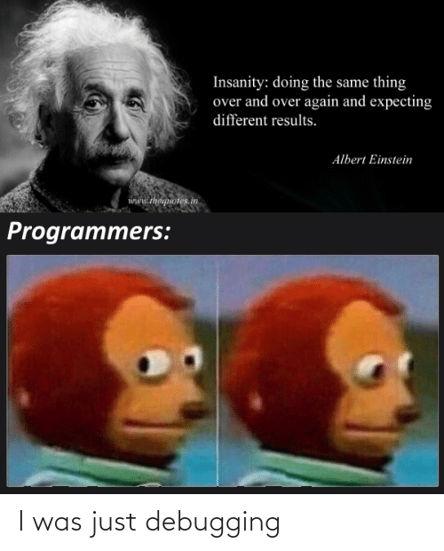 Albert Einstein, Einstein, and Insanity: Insanity: doing the same thing  over and over again and expecting  different results.  Albert Einstein  www.thequotes.in  Programmers: I was just debugging