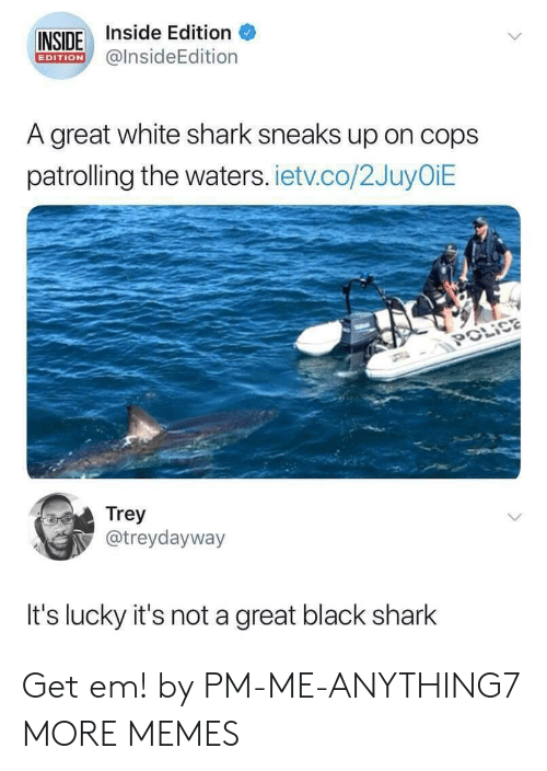 Dank, Memes, and Target: INSIDE Inside Edition  @lnsideEdition  EDITION  A great white shark sneaks up on cops  patrolling the waters. ietv.co/2JuyOiE  Trey  @treydayway  It's lucky it's not a great black shark Get em! by PM-ME-ANYTHING7 MORE MEMES
