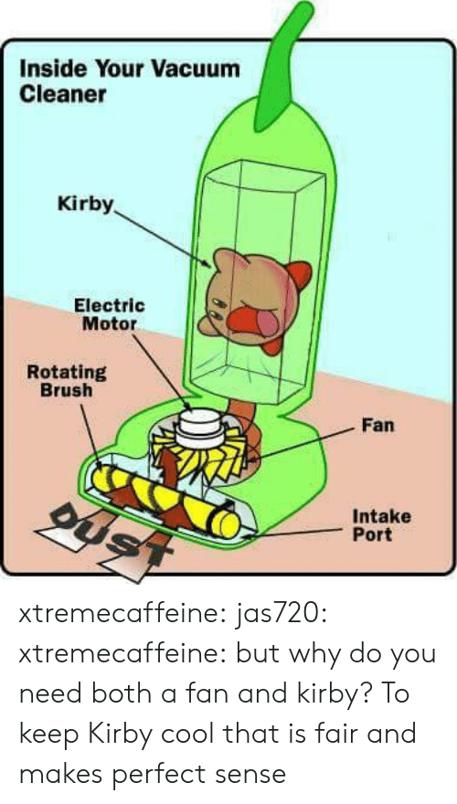 Tumblr, Blog, and Cool: Inside Your Vacuum  Cleaner  Kirby  Electric  Motor  Rotating  Brush  Fan  Intake  Port xtremecaffeine: jas720:   xtremecaffeine:  but why do you need both a fan and kirby?  To keep Kirby cool   that is fair and makes perfect sense