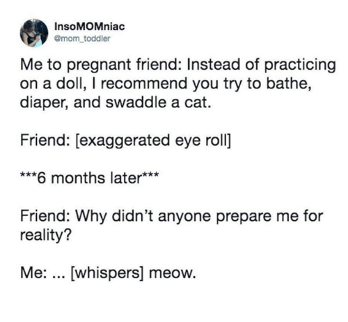Memes, Pregnant, and Reality: InsoMOMniac  @mom toddler  Me to pregnant friend: Instead of practicing  on a doll, I recommend you try to bathe,  diaper, and swaddle a cat.  Friend: [exaggerated eye roll]  ***6 months later***  Friend: Why didn't anyone prepare me for  reality?  Me:... [whispers] meow.
