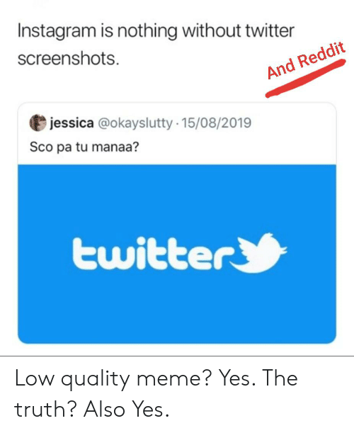 Instagram Is Nothing Without Twitter Screenshots and Reddit