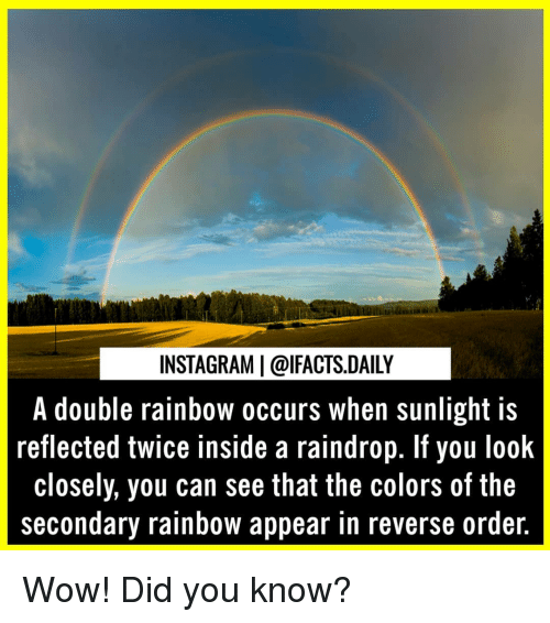 Instagram, Memes, and Wow: INSTAGRAM | @lFACTS.DAILY  A double rainbow occurs when sunlight is  reflected twice inside a raindrop. If you look  closely, you can see that the colors of the  secondary rainbow appear in reverse ordeir. Wow! Did you know?