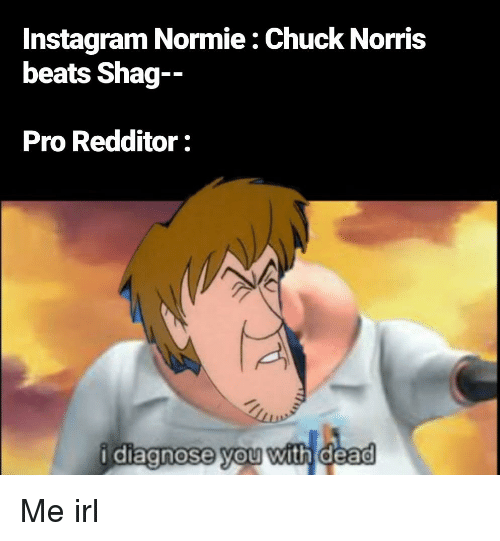 Instagram Normie Chuck Norris Beats Shag-- Pro Redditor Idiagnose