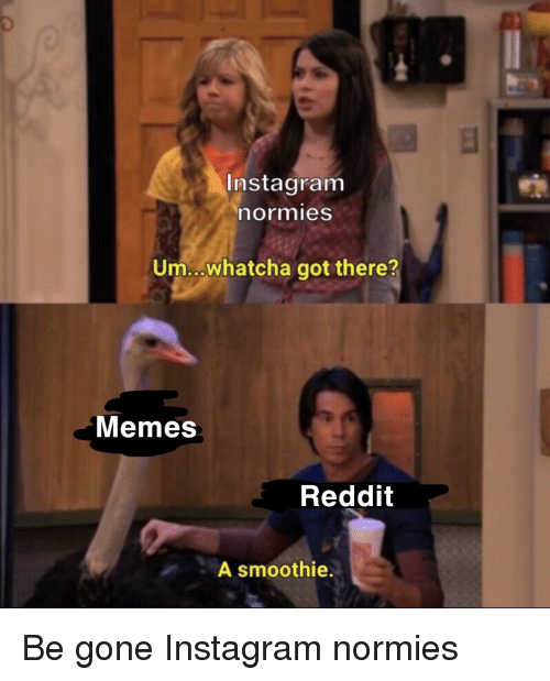 Instagram Normies Umwhatcha Got There? Memes Reddit a Smoothie