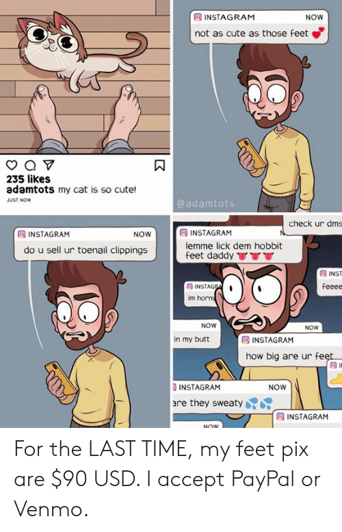 Butt, Cute, and Instagram: INSTAGRAM  not as cute as those feet  NOW  235 likes  adamtots my cat is so cute!  JUST NOW  @adamtots  check ur dms  INSTAGRAM  lemme lick dem hobbit  feet daddy TT  回INSTAGRAM  NOW  do u sell ur toenail clippings  同INST  im horn  NOW  NOW  E INSTAGRAM  how big are ur fe  in my butt  INSTAGRAM  re they sweatyK  NOW  INSTAGRAM For the LAST TIME, my feet pix are $90 USD. I accept PayPal or Venmo.