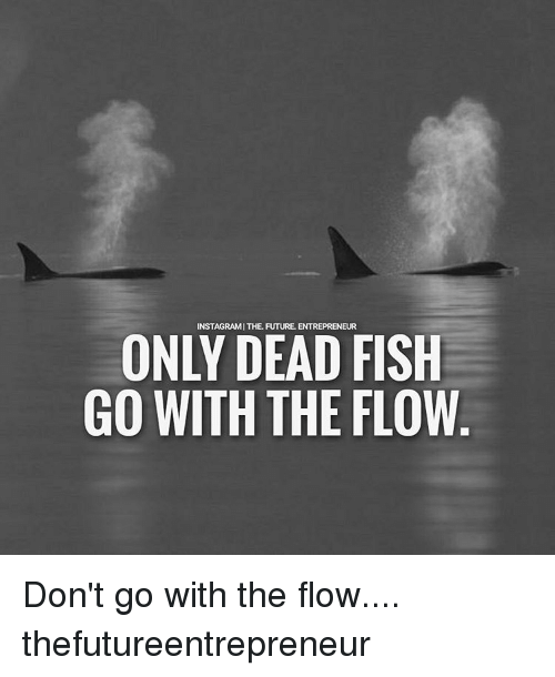 25 best memes about flowing flowing memes for Only dead fish go with the flow