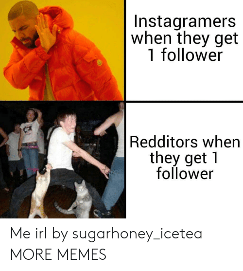 Dank, Memes, and Target: Instagramers  when they get  1 follower  Redditors when  they get 1  follower Me irl by sugarhoney_icetea MORE MEMES