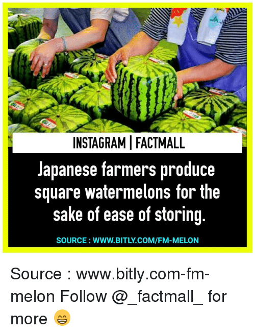 instagramifactmall japanese farmers produce square watermelons for the sake of 9355828 ✅ 25 best memes about sour gummy worm sour gummy worm memes