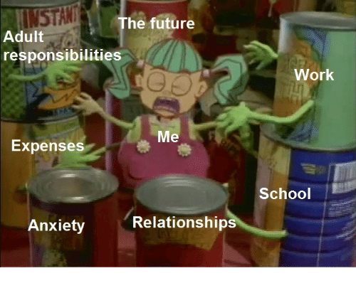 Future, Relationships, and School: INSTAN  Adult  The future  responsibilities  Work  Me  Expenses  School  Anxiety Relationships