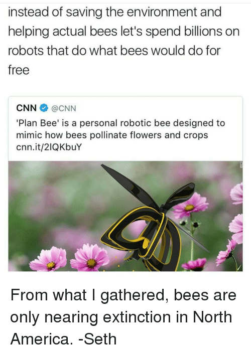 Instead of Saving the Environment and Helping Actual Bees