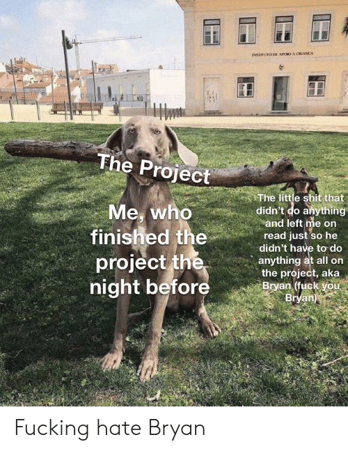 Who, Project, and Aka: INSTITUTO DE APOO A CRIANCA  The Project  The little shit that  didn't do anything  and left me on  read just so he  didn't have to do  anything at all on  the project, aka  Bryan (fuck you  Bryan)  Me, who  finished the  project the  night before Fucking hate Bryan