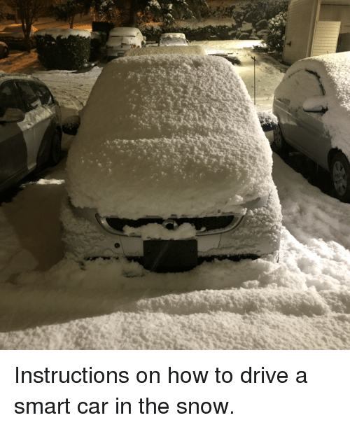 Funny Drive And How To Instructions On A Smart Car