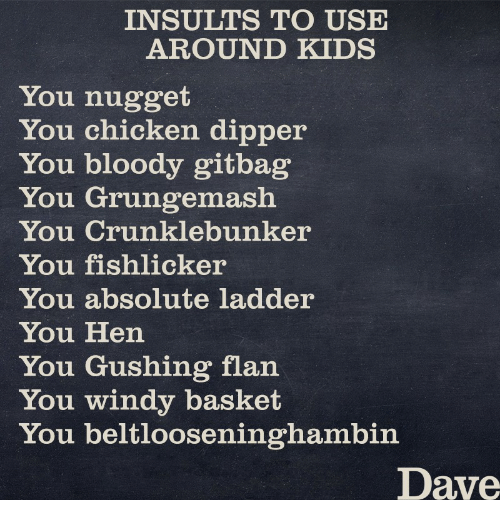 INSULT TO USE AROUND KIDS You Nugget You Chicken Dipper You