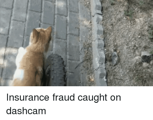 Insurance, Fraud, and Dashcam: Insurance fraud caught on dashcam