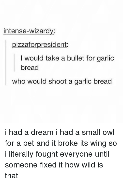 A Dream, Memes, and Wild: intense-wizardy:  pizzaforpresident:  I would take a bullet for garlic  bread  who would shoot a garlic bread i had a dream i had a small owl for a pet and it broke its wing so i literally fought everyone until someone fixed it how wild is that