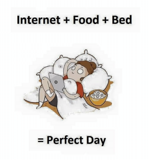 Food, Internet, and Day: Internet Food Bed  Perfect Day