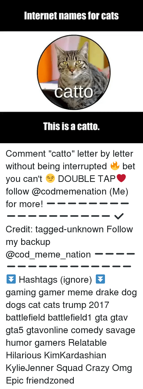 "Cats, Crazy, and Dogs: Internet names for cats  catto  This is a catto. Comment ""catto"" letter by letter without being interrupted 🔥 bet you can't 😏 DOUBLE TAP❤ follow @codmemenation (Me) for more! ➖➖➖➖➖➖➖➖➖➖➖➖➖➖➖➖➖➖ ✔ Credit: tagged-unknown Follow my backup @cod_meme_nation ➖➖➖➖➖➖➖➖➖➖➖➖➖➖➖➖ ⏬ Hashtags (ignore) ⏬ gaming gamer meme drake dog dogs cat cats trump 2017 battlefield battlefield1 gta gtav gta5 gtavonline comedy savage humor gamers Relatable Hilarious KimKardashian KylieJenner Squad Crazy Omg Epic friendzoned"