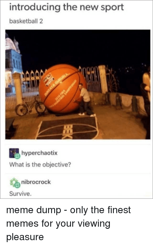 Basketball, Meme, and Memes: introducing the new sport  basketball 2  hyperchaotix  What is the objective?  nibrocrock  Survive. meme dump - only the finest memes for your viewing pleasure