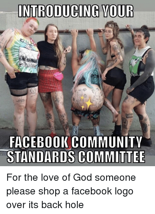 INTRODUCING VOUR FACEBOOKCOMMUNITY STANDARDS COMMITTEE