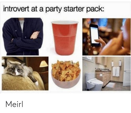 Introvert, Party, and Starter Pack: introvert at a party starter pack: Meirl