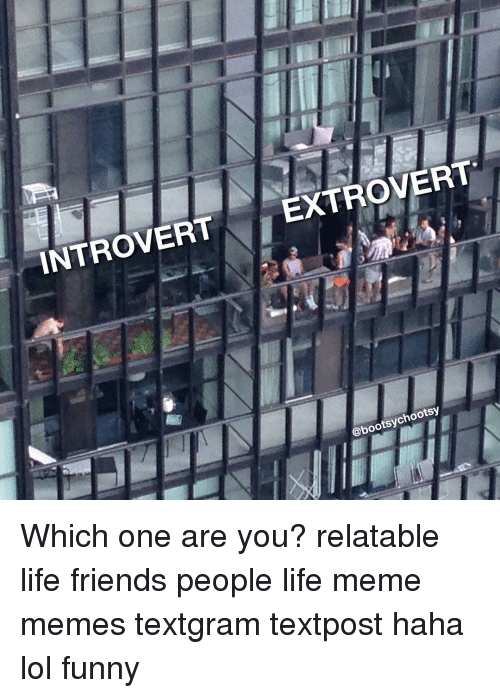 Introvert Extrovert Which One Are You Relatable Life Friends