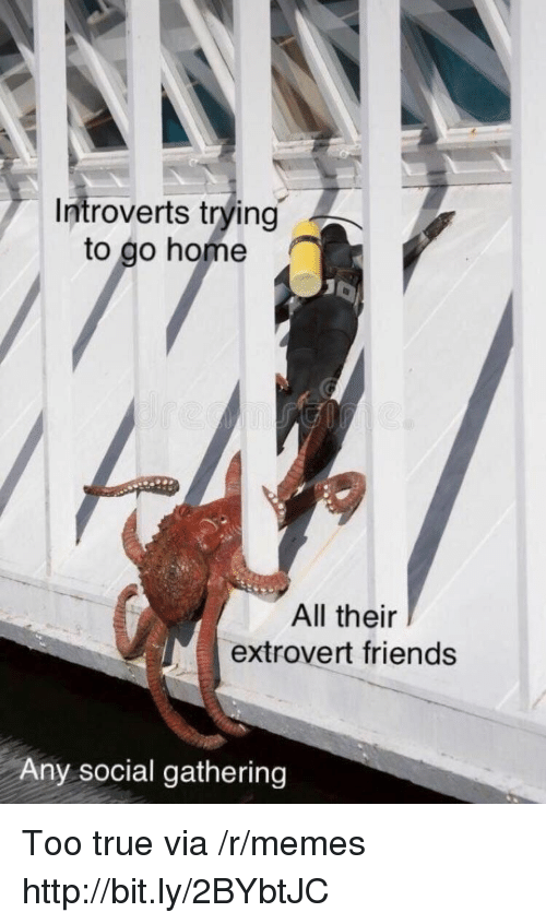 Friends, Memes, and True: Introverts trying  to go home  All their  extrovert friends  Any social gathering Too true via /r/memes http://bit.ly/2BYbtJC