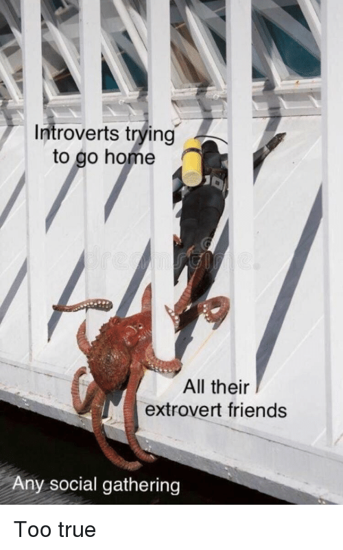 Friends, True, and Home: Introverts trying  to go home  All their  extrovert friends  Any social gathering Too true