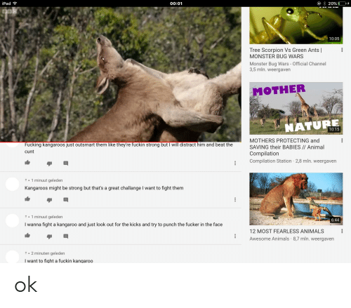 """Animals, Fucking, and Ipad: iPad  00:01  B 20% 1 0.4  10:05  Tree Scorpion Vs Green Ants    MONSTER BUG WARS  Monster Bug Wars - Official Channel  3,5 mln. weeaven  MOTHER  ATURE  10:15  MOTHERS PROTECTING and  SAVING their BABIES// Animal  Compilation  : Compilation Station 2,8 mln. weergaven  Fucking kangaroos just outsmart them like theyre fuckin strong but I will distract him and beat the  cunt  """" 1 minuut geleden  Kangaroos might be strong but that's a great challange I want to fight them  """" 1 minuut geleden  I wanna fight a kangaroo and just look out for the kicks and try to punch the fucker in the face  6:44  12 MOST FEARLESS ANIMALS  Awesome Animals 8,7 mln. weergaven  2 minuten geleden  I want to fight a fuckin kangaroo ok"""