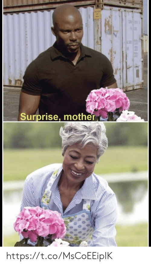 Memes, 🤖, and Mother: Ir  Surprise, mother https://t.co/MsCoEEipIK