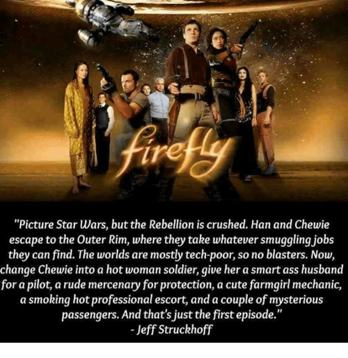 """Ass, Cute, and Memes: ire  """"Picture Star Wars, but the Rebellion is crushed. Han and Chewie  escape to the Outer Rim, where they take whatever smuggling jobs  they can find. The worlds are mostly tech-poor, so no blasters. Now,  change Chewie into a hot woman soldier, give her a smart ass husband  for a pilot,a rude mercenary for protection, a cute farmgirl mechanic,  a smoking hot professional escort, and a couple of mysterious  passengers. And that's just the first episode.""""  - Jeff Struckhoff"""