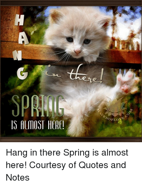 Is Almost Here Hang In There Spring Is Almost Here Courtesy Of