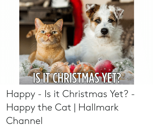 Hallmark Christmas In July Meme.Is Itchristmas Yet Happy Is It Christmas Yet Happy The