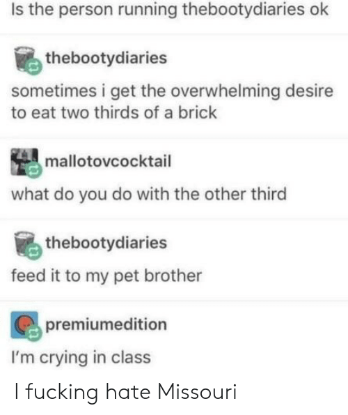 Crying, Fucking, and Missouri: Is the person running thebootydiaries ok  thebootydiaries  sometimes i get the overwhelming desire  to eat two thirds of a brick  mallotovcocktail  what do you do with the other third  thebootydiaries  feed it to my pet brother  premiumedition  I'm crying in class I fucking hate Missouri