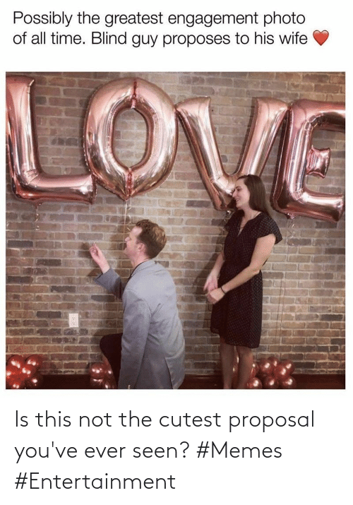 Memes, Entertainment, and Proposal: Is this not the cutest proposal you've ever seen? #Memes #Entertainment