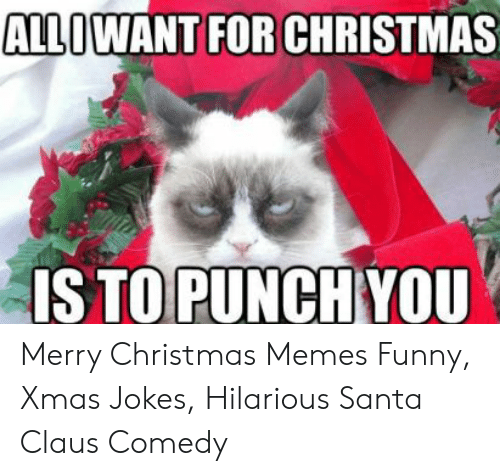 Merry Christmas Jokes.Is To Punch You Merry Christmas Memes Funny Xmas Jokes