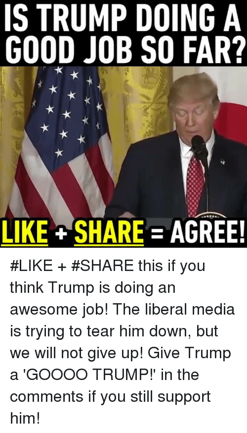 Memes, 🤖, and Goooo: IS TRUMP DOING A  GOOD JOB SO FAR?  LIKE SHARE AGREE! #LIKE + #SHARE this if you think Trump is doing an awesome job! The liberal media is trying to tear him down, but we will not give up!  Give Trump a 'GOOOO TRUMP!' in the comments if you still support him!