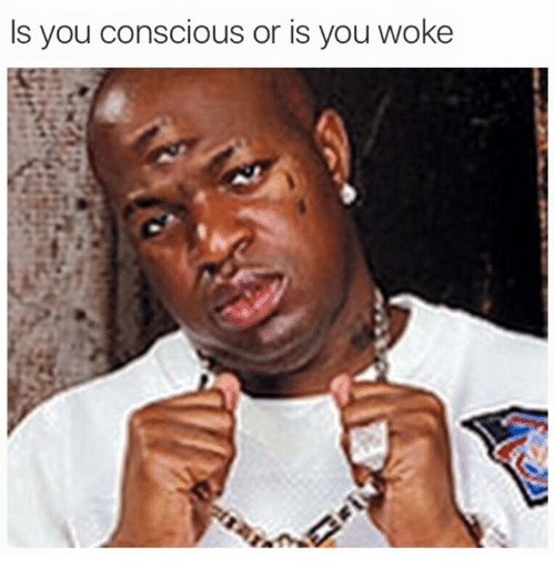 is you conscious or is you woke 2653540 is you conscious or is you woke dank meme on me me