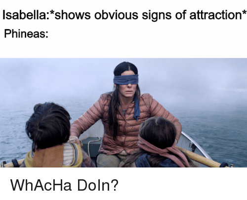 Isabella*shows Obvious Signs of Attraction* Phineas | Reddit Meme on