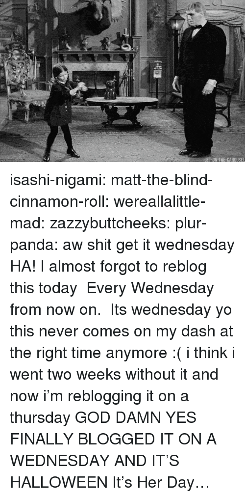 God, Halloween, and Shit: isashi-nigami:  matt-the-blind-cinnamon-roll:  wereallalittle-mad:  zazzybuttcheeks:  plur-panda:      aw shit get it wednesday  HA! I almost forgot to reblog this today   Every Wednesday from now on.   Its wednesday yo   this never comes on my dash at the right time anymore :( i think i went two weeks without it and now i'm reblogging it on a thursday  GOD DAMN YES FINALLY BLOGGED IT ON A WEDNESDAY  AND IT'S HALLOWEEN   It's Her Day…