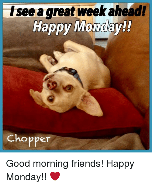 Isee A Great Week Ahead Happy Monday Chopper Good Morning Friends