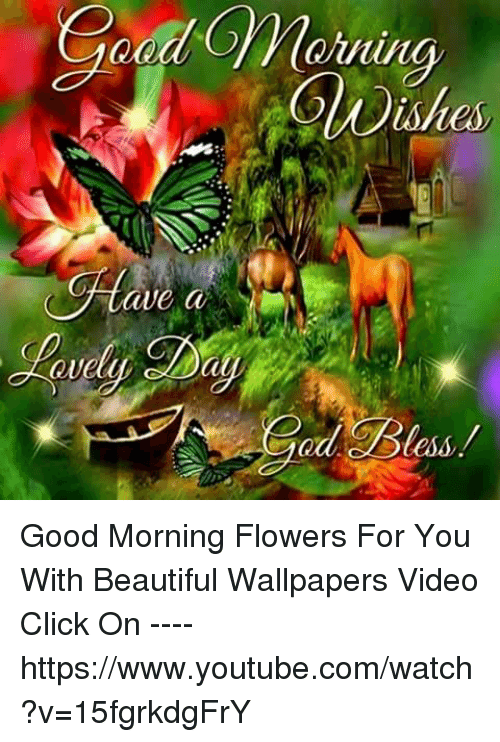 Good morning images you tube