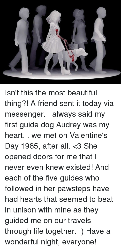 Beautiful, Life, and Memes: Isn't this the most beautiful thing?!  A friend sent it today via messenger.  I always said my first guide dog Audrey was my heart... we met on Valentine's Day 1985, after all. <3  She opened doors for me that I never even knew existed!  And, each of the five guides who followed in her pawsteps have had hearts that seemed to beat in unison with mine as they guided me on our travels through life together. :)  Have a wonderful night, everyone!