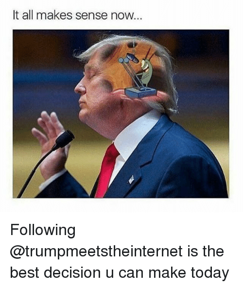 Memes, Best, and Today: It all makes sense now. Following @trumpmeetstheinternet is the best decision u can make today