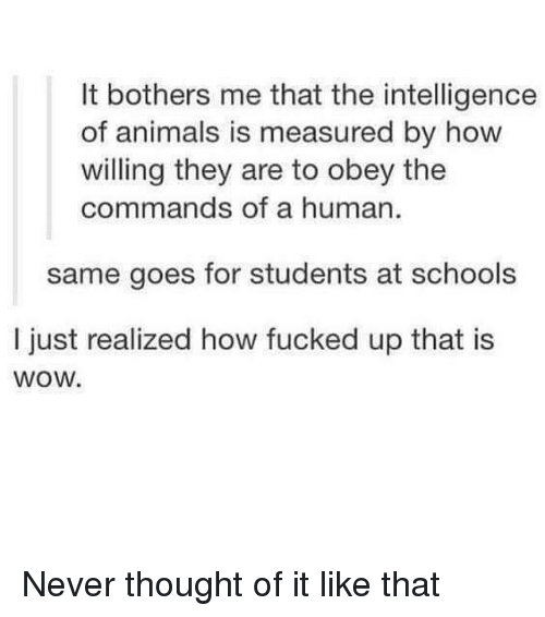 Animals, Wow, and Never: It bothers me that the intelligence  of animals is measured by how  willing they are to obey the  commands of a human  same goes for students at schools  I just realized how fucked up that is  wow. Never thought of it like that